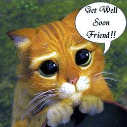 get well soon friend get well myniceprofile com