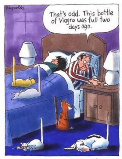 Viagra was an accident