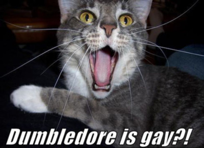 funny gay halloween myspace