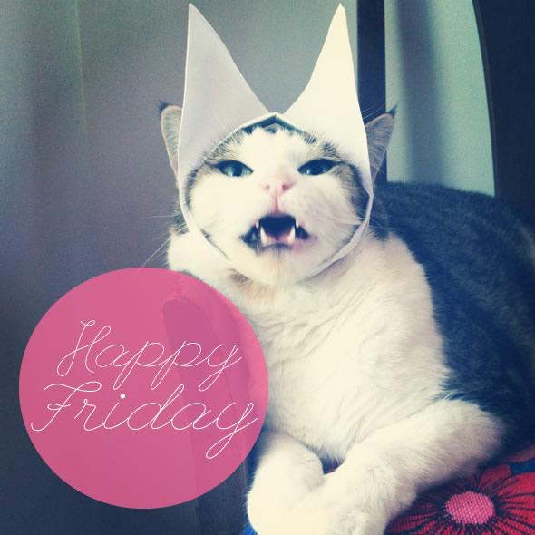 LOL cat: Happy Friday :: Friday :: MyNiceProfile.com