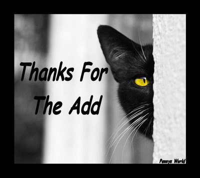 Thanks add cat