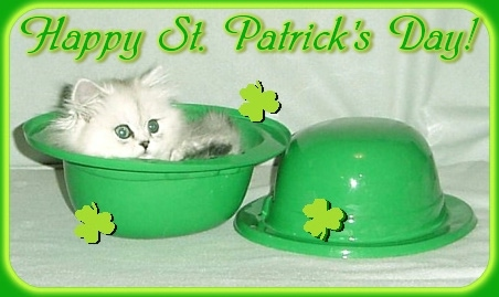 St. Patrick's Day Comments Pictures