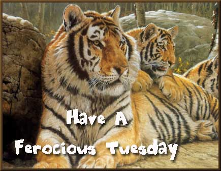Have A Ferocious Tuesday Tuesday Myniceprofile Com