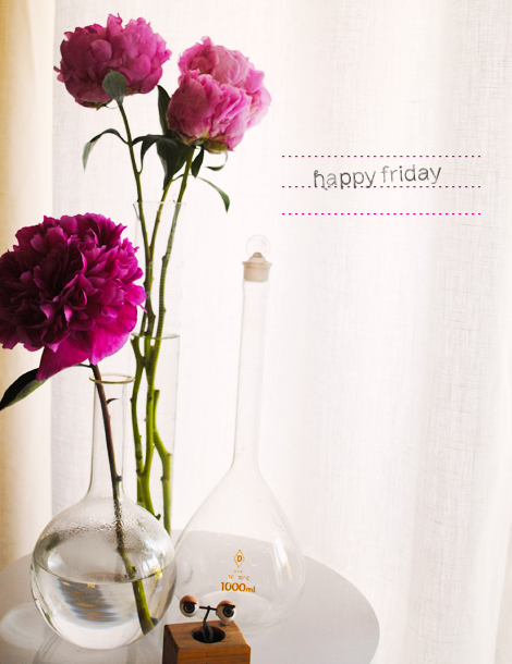 Happy Friday Flowers Friday Myniceprofile Com