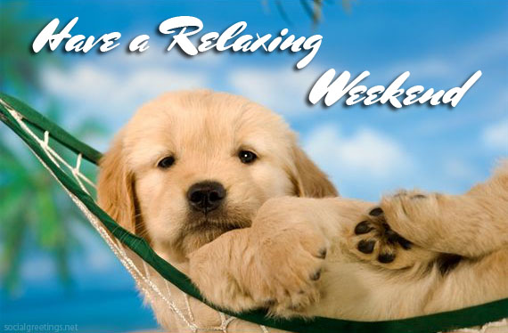 Have a relaxing Weekend -- Cute Puppy :: Days - Weekend ...