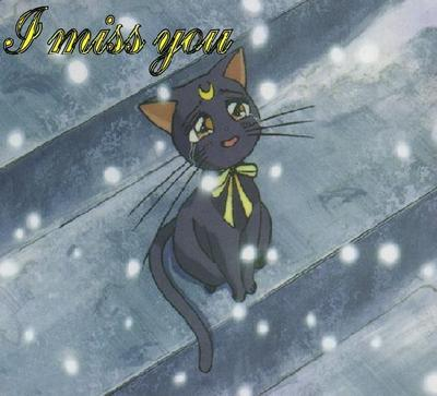 I Miss You Anime Cat Miss You