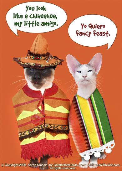 Iluvym Funny Cinco Mayo Drinking Quotes
