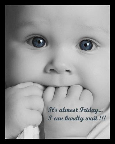 Thanksgiving Alcohol: Friday Baby :: Friday :: MyNiceProfile.com