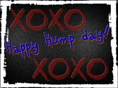 Days - Hump Day Comments Pictures