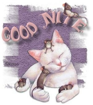 good night kitty :: Bye :: MyNiceProfile com