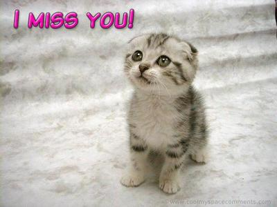 Miss You Comments Pictures