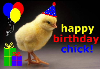 Happy Birthday Chick Happy Birthday Myniceprofile Com